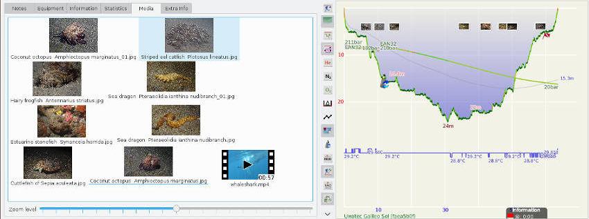 Subsurface Version 4 User Manual | Subsurface